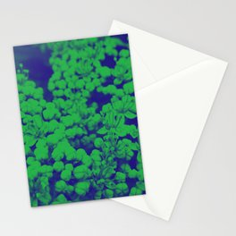 Duotone Florals Stationery Cards