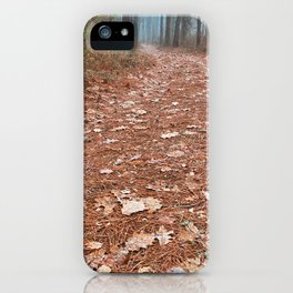 Frosty Forest Trail iPhone Case