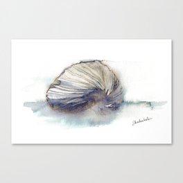 Paper Nautilus Shell Canvas Print