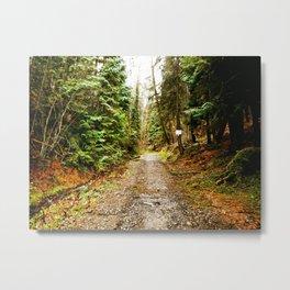 Hike-2 Metal Print