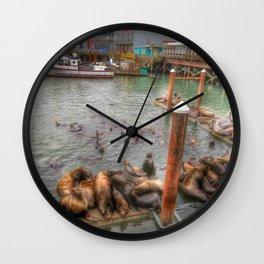 The Sea Lion Spot Wall Clock