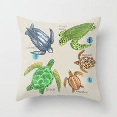 Sea Turtle Types Throw Pillow