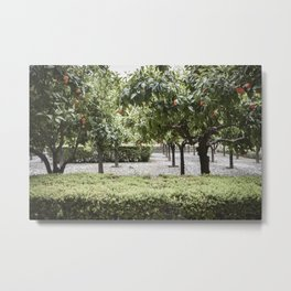 Granada Orange Tree Patio Metal Print