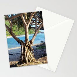 Looking through the Pandanus Stationery Cards