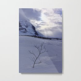 I wonder if the snow loves the trees and fields Metal Print