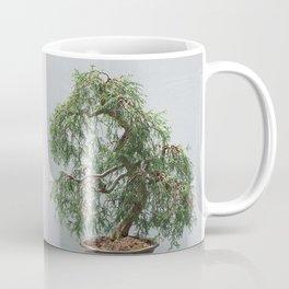 Bonsai Tree- Sawara False Cypress Coffee Mug