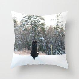 Renaissance Dog Throw Pillow