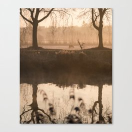 The Early Bird Captures The Shot Canvas Print