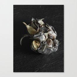 Silver Fruit 4 Canvas Print