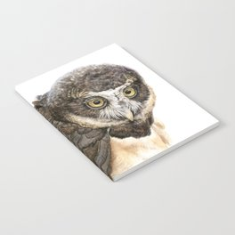 Spectacled Owl Notebook