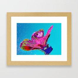 Hibisco Framed Art Print