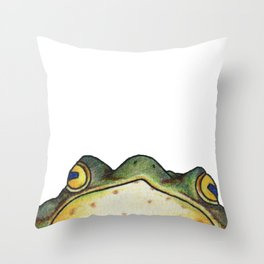 My Sensei is a Frog, Looking into You're Soul Throw Pillow