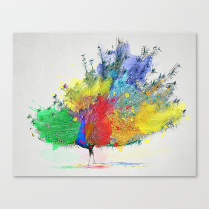Peacock Colorful Canvas Print