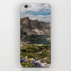 Alpine Lakes, Wildflowers and Mountains in the Wyoming Wilderness iPhone & iPod Skin
