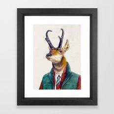 Pronghorn Deer Framed Art Print