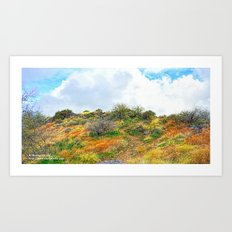A Path With Many Stories Art Print