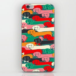 dachshund pattern- happy dogs iPhone Skin