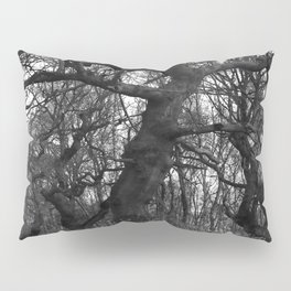 Oak Trees on the March Pillow Sham