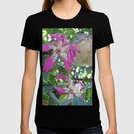 Silk Floss Tree Blossom & Fluff T-shirt