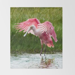 Roseate Spoonbill Throw Blanket