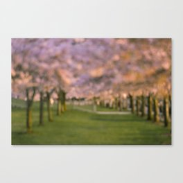 Cherrys by Boone Speed Canvas Print