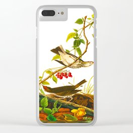 Golden Crowned Thrush Bird Clear iPhone Case