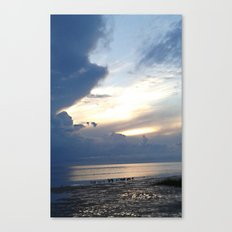 After A Rain Canvas Print