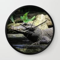 crocodile Wall Clocks featuring Crocodile by Falko Follert Art-FF77