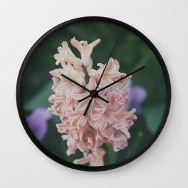 Hyacinthus Wall Clock