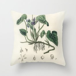 English violet (Viola odorata)  from Medical Botany (1836) by John Stephenson and James Morss Church Throw Pillow