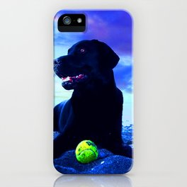 Ziggy Black Labrador iPhone Case