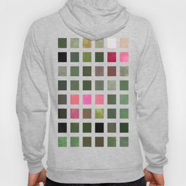 Pink Roses in Anzures 5  Abstract Rectangles 2 Hoody