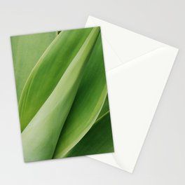 Maui Green Stationery Cards