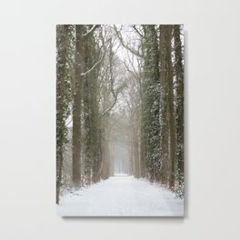 Winter forest road covered with snow | fine art photo print in the netherlands | nature and travel photograpy Metal Print