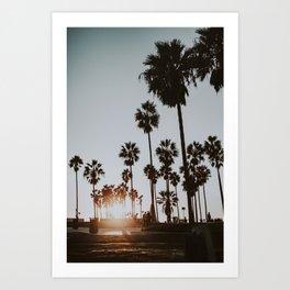 palm trees vi / venice beach, california Art Print