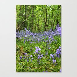 Looking for Fairies Canvas Print