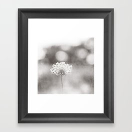 """Black and White Nature Photography, Queen Anne's Lace Grey Photo, Floral Print, """"Dreamy"""" Framed Art Print"""