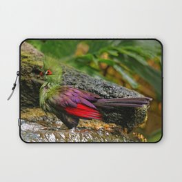 Green Turaco at the Waterfall Laptop Sleeve