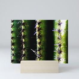 Saguaro Ribs Mini Art Print