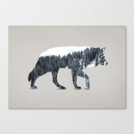 The Grey Wolf Canvas Print