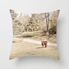 How Now! Throw Pillow