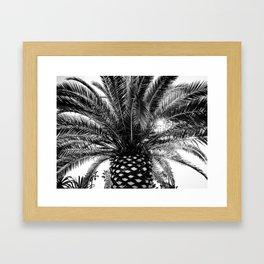 B&W Palm Tree Framed Art Print