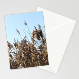Novembre 4 Stationery Cards