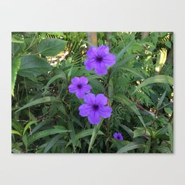 Purple flowers among green Canvas Print