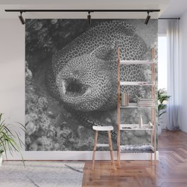 Coiled fat eel Wall Mural