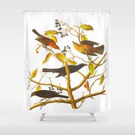 Rusty Grackle Bird Shower Curtain