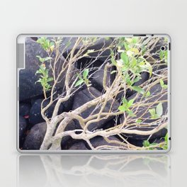 Black Rock Laptop & iPad Skin