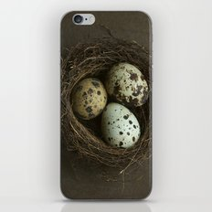 Speckled Eggs and Nest iPhone & iPod Skin