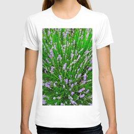 Lavender Close Up T-shirt