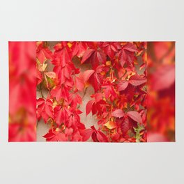 Vitaceae ivy wall abstract Rug
